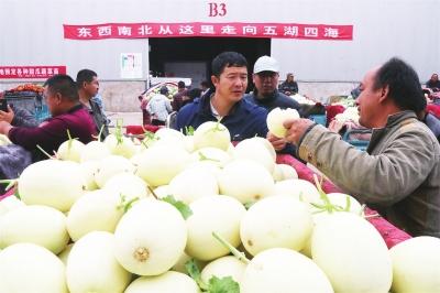 瓜农在果蔬城向客商推介自己的甜瓜.jpg
