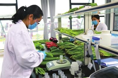 农产品质量安全检测.jpg