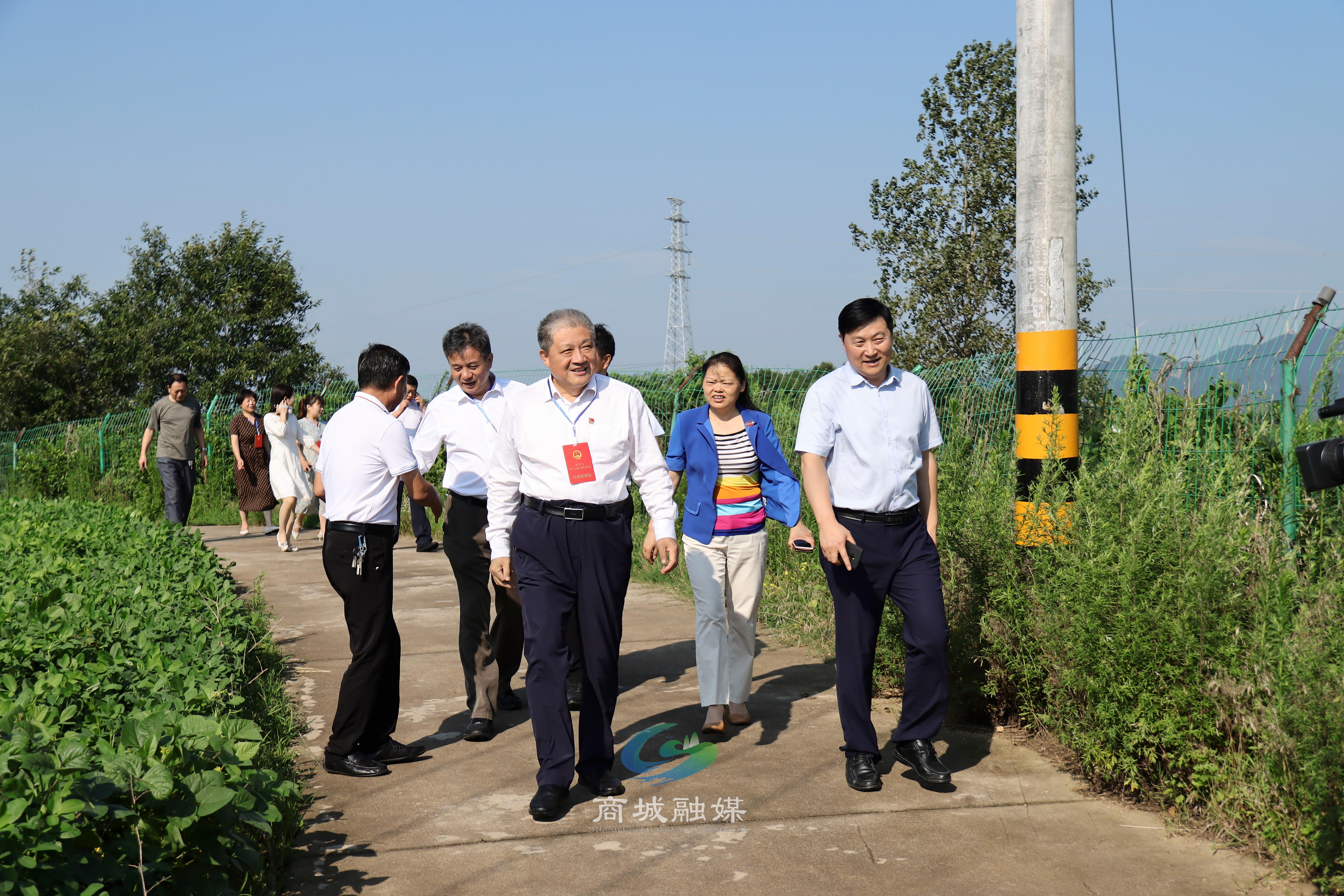 县人大常委会主任范东升带队视察村级集体经济发展工作