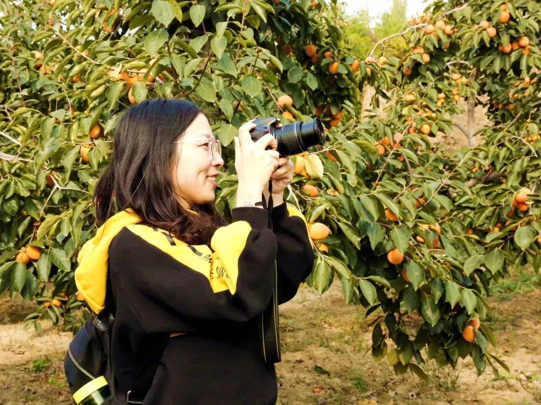 柿子7.jpg